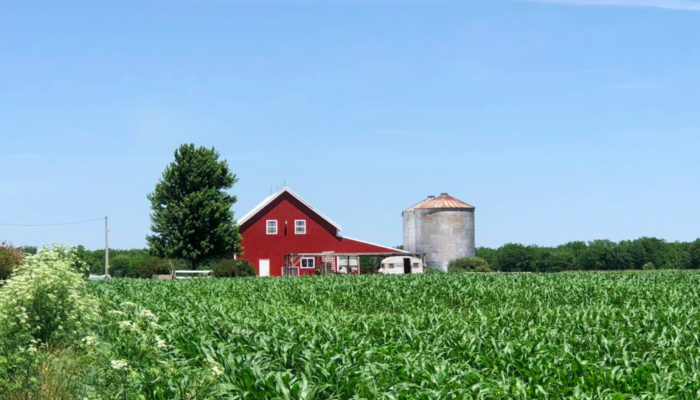Barn visit: 7 musts for your day trip