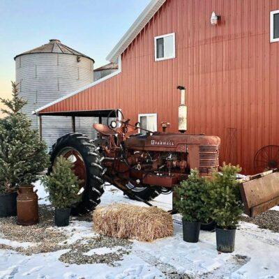 Christmas at the Barn 2020