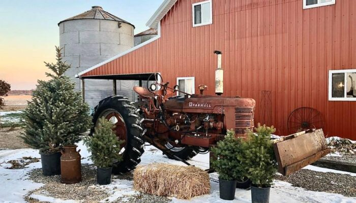 Christmas at the Barn 2020